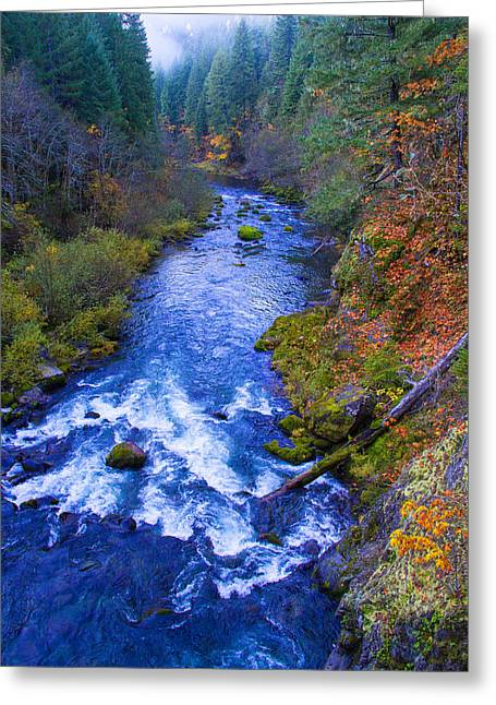 Scenic Drive Greeting Cards - McKenzie river in autumn Greeting Card by Kunal Mehra
