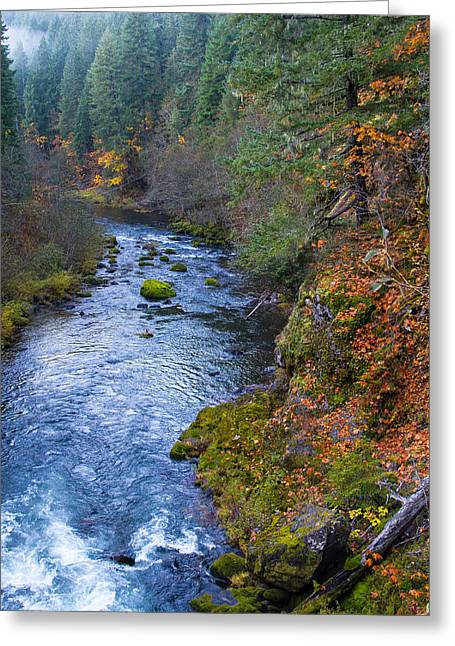 Scenic Drive Greeting Cards - McKenzie river Greeting Card by Kunal Mehra