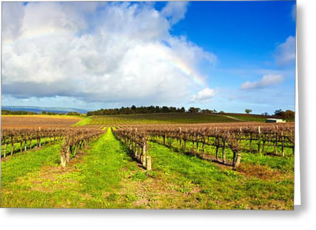 Vale Greeting Cards - McLaren Flat Vineyards  Greeting Card by Bill  Robinson