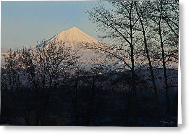 Mt. Massive Greeting Cards - McLaughlin Late Winter Day Greeting Card by Mick Anderson