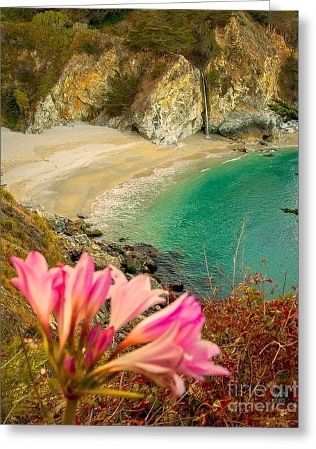 Pfeiffer Beach Greeting Cards - McWay Falls-3am adventure Greeting Card by David Millenheft