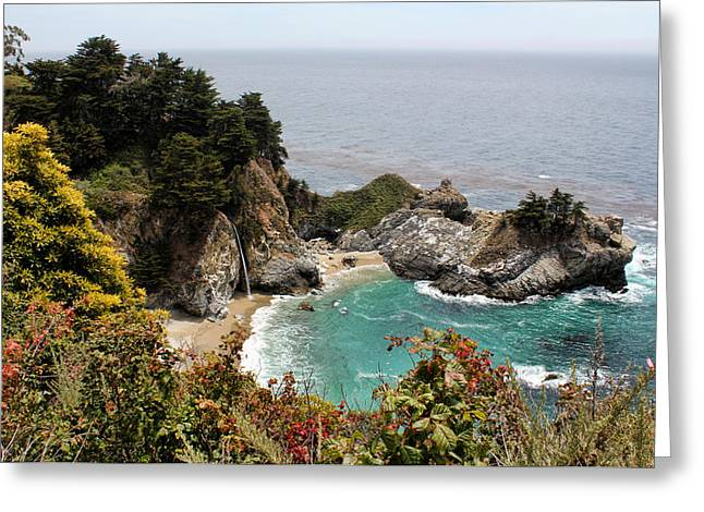 Mcway Falls 2 Greeting Card by Judy Vincent