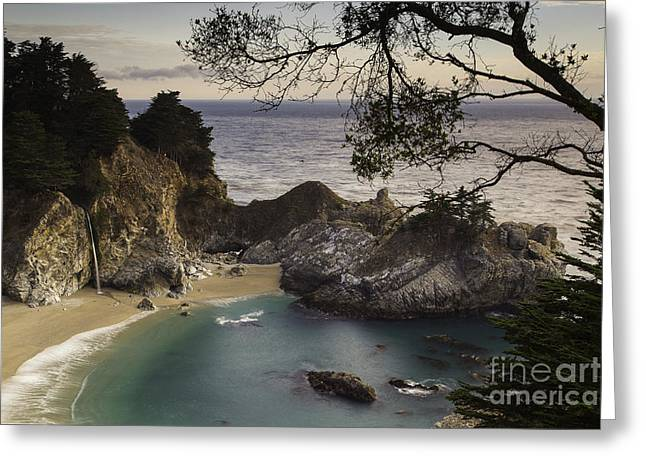 Mcway Falls Greeting Card by Michele Steffey
