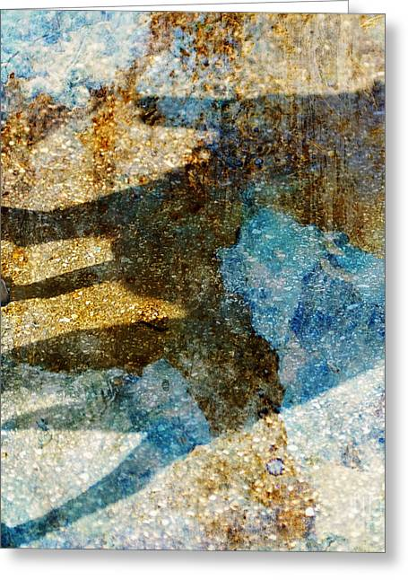 Dog Walking Digital Art Greeting Cards - Me and my Shadow Greeting Card by Judy Wood
