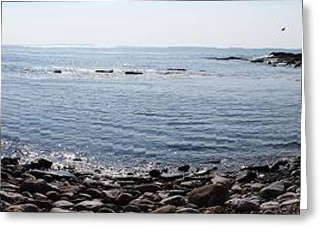 Maine Spring Greeting Cards - ME Salt Pond WIDE Greeting Card by GJ Waller