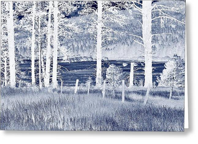 Meadow 9 Greeting Card by Larry Campbell
