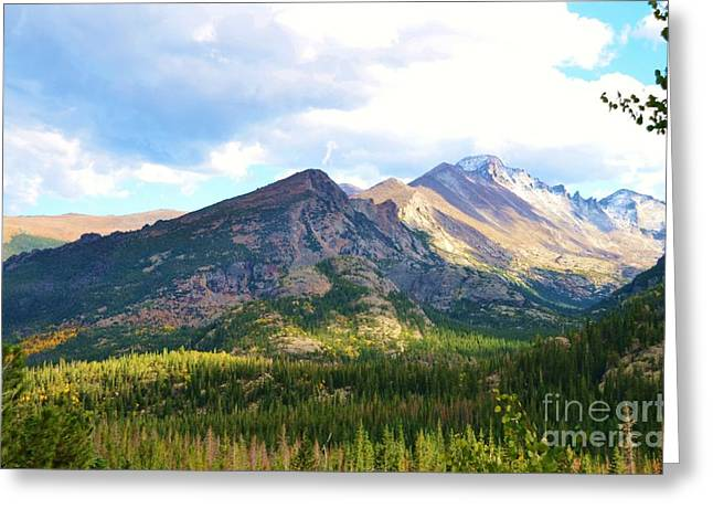 Struckle Greeting Cards - Meadow and Mountains Greeting Card by Kathleen Struckle