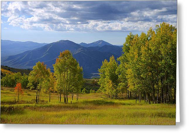Nature Greeting Cards - Meadow Highlights Greeting Card by Chad Dutson