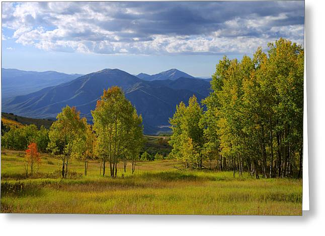 Meadow Highlights Greeting Card by Chad Dutson