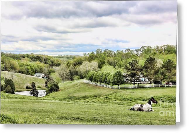 Tennessee Barn Greeting Cards - Meadow II Greeting Card by Chuck Kuhn