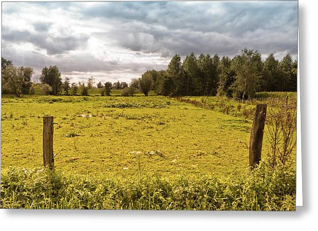 Ranch Home Greeting Cards - Countryside Greeting Card by Wim Lanclus