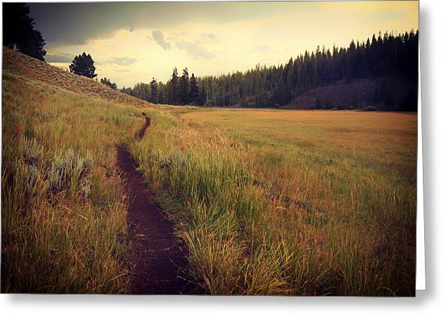 Ground Level Greeting Cards - Meadow Path Greeting Card by Mountain Dreams