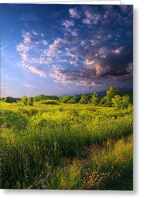 Red Photographs Greeting Cards - Meadow Greeting Card by Phil Koch