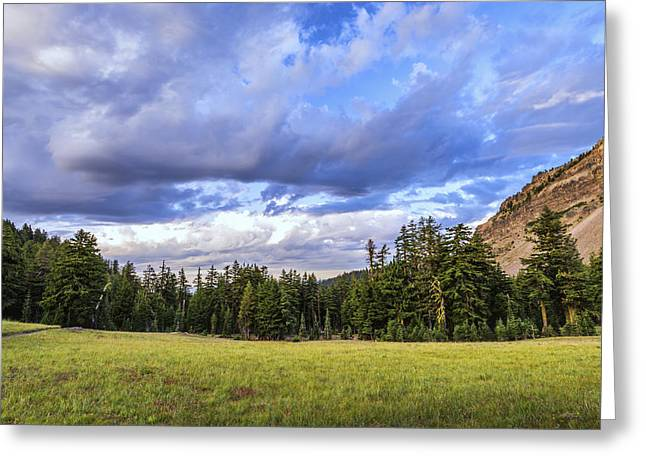 Crater Lake View Greeting Cards - Meadow Scene Greeting Card by Joseph S Giacalone