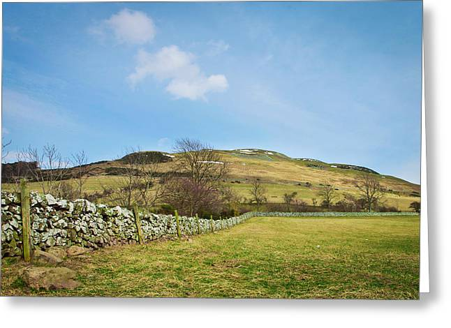Border Photographs Greeting Cards - Meadow  Greeting Card by Tom Gowanlock