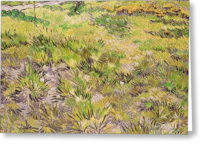 Landscape Posters Greeting Cards - Meadow with Butterflies Greeting Card by Vincent Van Gogh