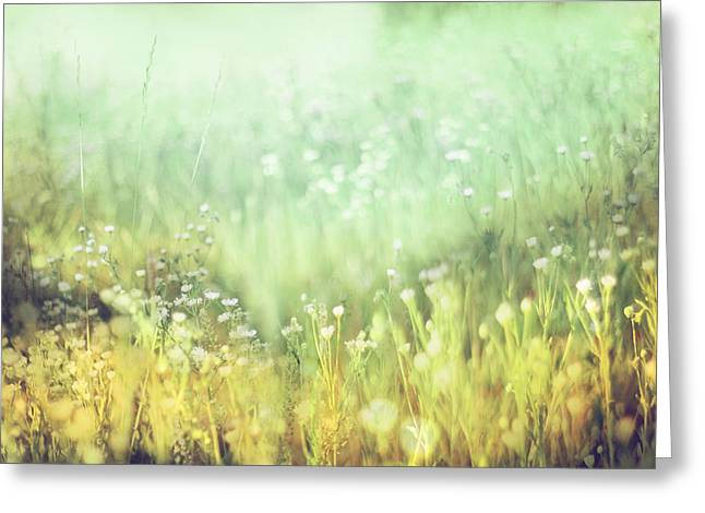 Impressionist Photography Greeting Cards - Meadowland Greeting Card by Amy Tyler