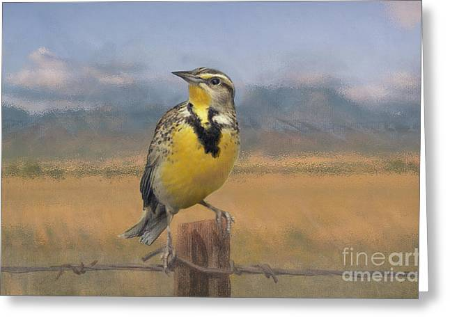 Barbed Wire Fences Pastels Greeting Cards - Meadowlark on the Fence 1 Greeting Card by Kathryn Yoder