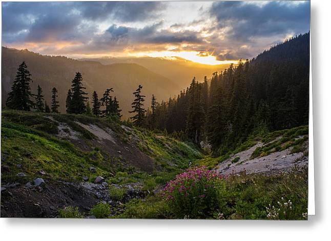 Meadows Dusk Horizons Greeting Card by Mike Reid