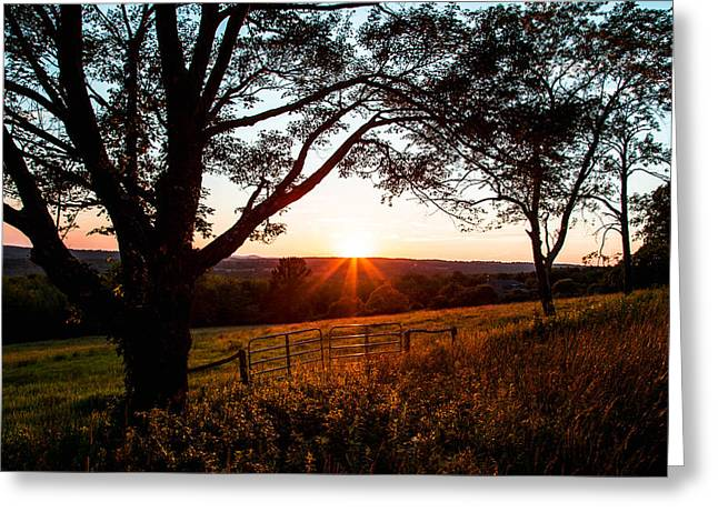 The Sun God Greeting Cards - Meadows Dusk Greeting Card by Karol  Livote