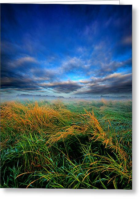 Fog Mist Greeting Cards - Meadows Mist Greeting Card by Phil Koch
