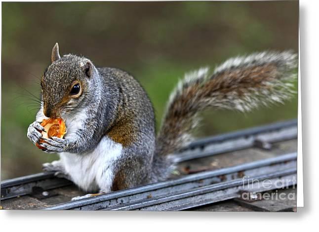 Meals On Rails Greeting Card by James Brunker
