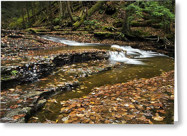 Nature Scene Greeting Cards - Meandering Waters Greeting Card by Christina Rollo