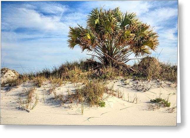 Emerald Coast Greeting Cards - Meanwhile Somewhere in Florida Greeting Card by JC Findley