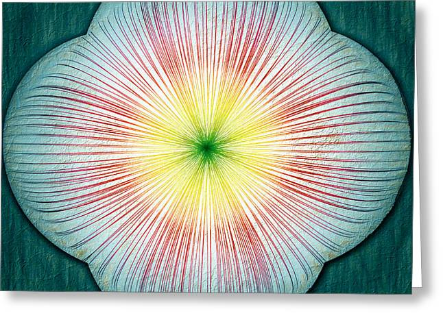 Masking Digital Art Greeting Cards - Medallion Greeting Card by John Haldane