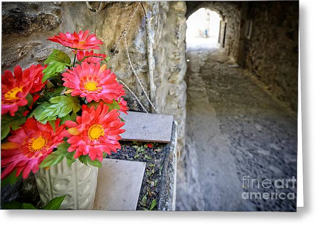 Chios Greeting Cards - Medieval alley with flowers. Mesta. Chios. Greece. Greeting Card by Steven Sklifas