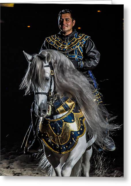 Medieval Times Knight And Horse Greeting Card by Gene Sherrill