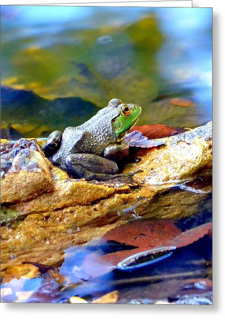 Blue Green Water Greeting Cards - Meditation Greeting Card by Deena Stoddard