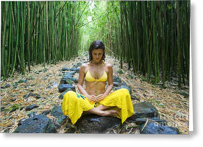 Crosslegged Greeting Cards - Meditation in Bamboo Forest Greeting Card by M Swiet Productions