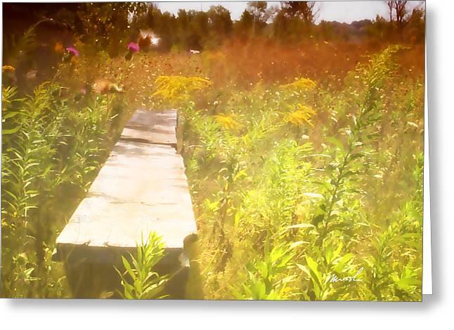 Baseball Fields Digital Art Greeting Cards - Meditation In Sunlight 1 Greeting Card by Marsha Charlebois
