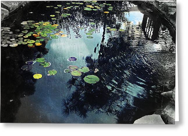 Nature Center Pond Greeting Cards - Meditation Greeting Card by Mark David Gerson