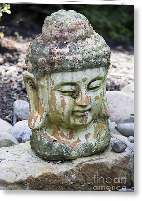 Garden Statuary Greeting Cards - Meditation Greeting Card by Teresa Mucha