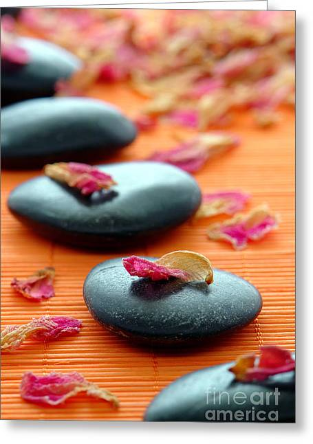 Spirituality Photographs Greeting Cards - Meditation Zen Path Greeting Card by Olivier Le Queinec