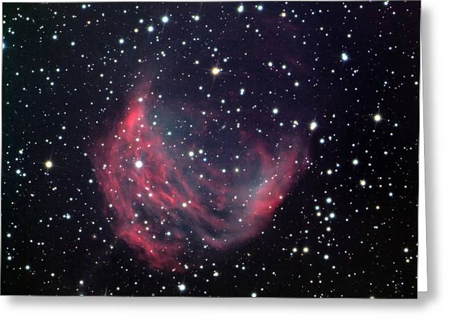 Magellanic Greeting Cards - Medusa nebula Greeting Card by Celestial Images