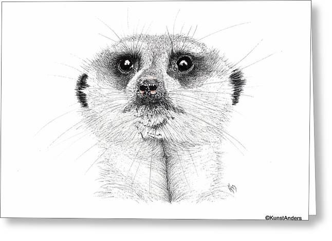 Meerkat Drawings Greeting Cards - Meerkat Greeting Card by Hanneke Messelink-Anders