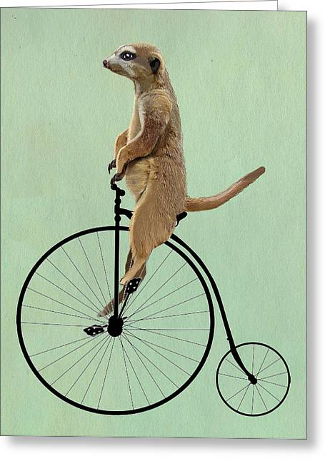 Animal Portraits Greeting Cards - Meerkat on a Black Penny Farthing Greeting Card by Kelly McLaughlan