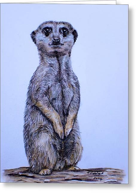 Meerkat Drawings Greeting Cards - Meerkat Greeting Card by Tricia Winwood
