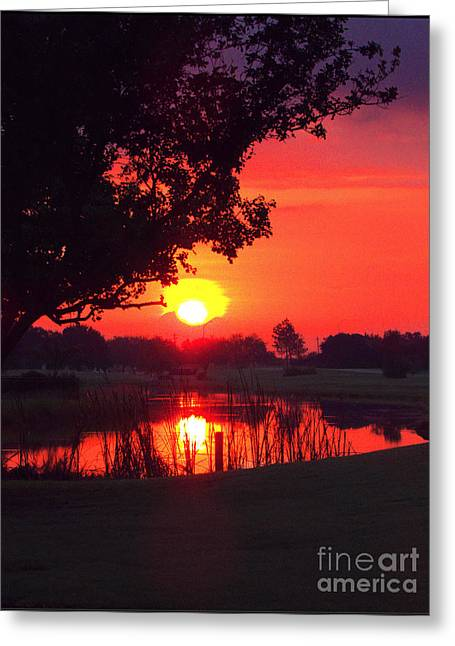 Inspirational Wildlife Prints Greeting Cards - Meet Me At Sunrise Greeting Card by Ella Kaye Dickey