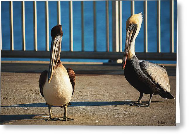 Cedar Key Greeting Cards - Meeting On The Fishing Pier Greeting Card by Mark Fuge
