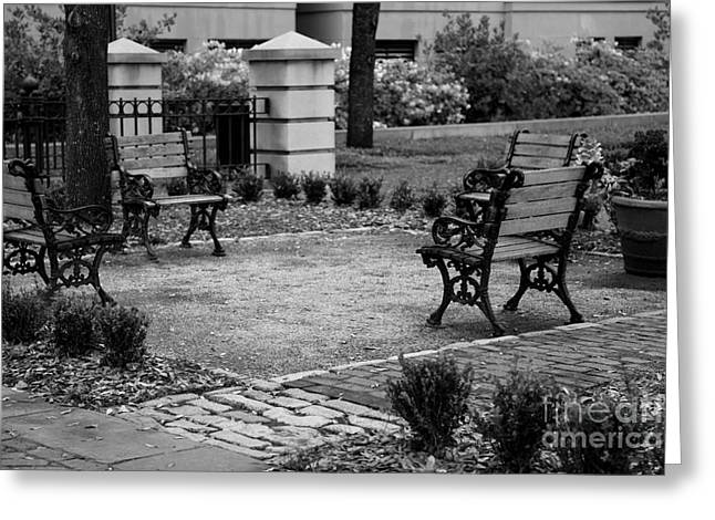 Park Benches Greeting Cards - Meeting Place in Charleston Greeting Card by Carol Groenen