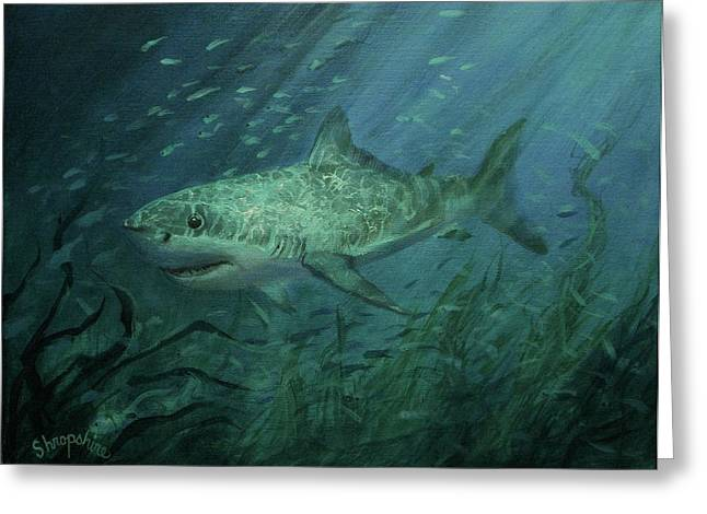Underwater Scenes Greeting Cards - Megadolon Shark Greeting Card by Tom Shropshire