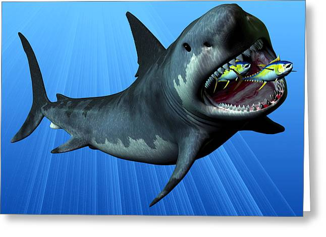 Sea Life Digital Greeting Cards - Megalodon Greeting Card by Corey Ford