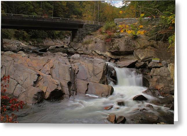 Gatlinburg Tennessee Greeting Cards - Meigs Falls In Autumn Greeting Card by Dan Sproul