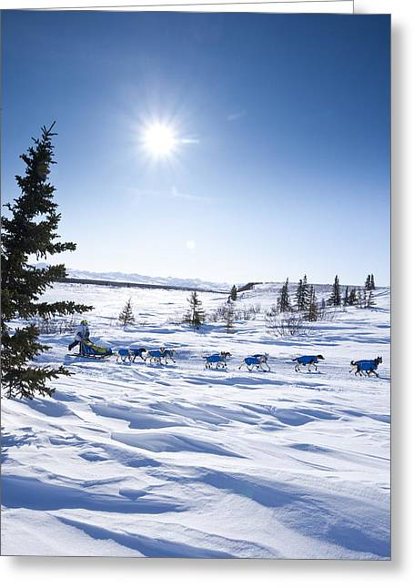 Cold Day Greeting Cards - Melissa Owens Runs On The Trail A Few Greeting Card by Jeff Schultz