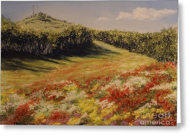 Hiking Pastels Greeting Cards - Melkow Trail  Greeting Card by Stanza Widen