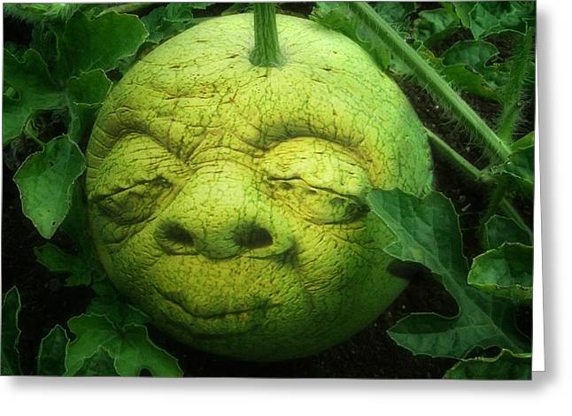 Melon Digital Greeting Cards - Melon Head Greeting Card by Jack Zulli
